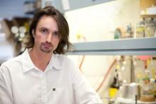 Hendrik Luesch, Ph.D.