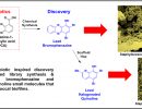 Natural Product Inspired Drug Discovery