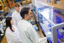 Pharmacogenomics students work under the hood in a lab