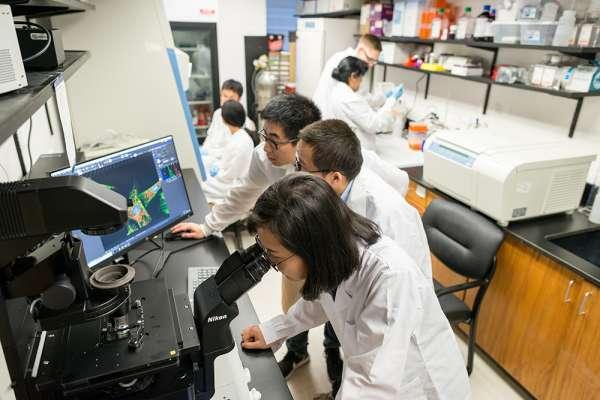 Lina Cui, Assistant professor, Pharmacy, medicinal chemistry
