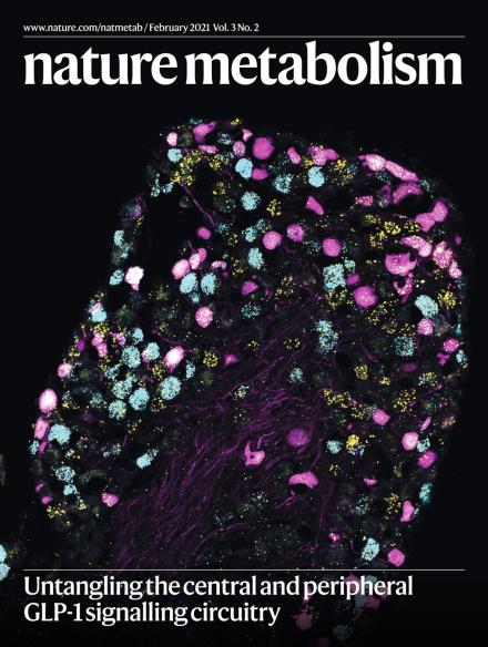 Nature Metabolism Cover Art